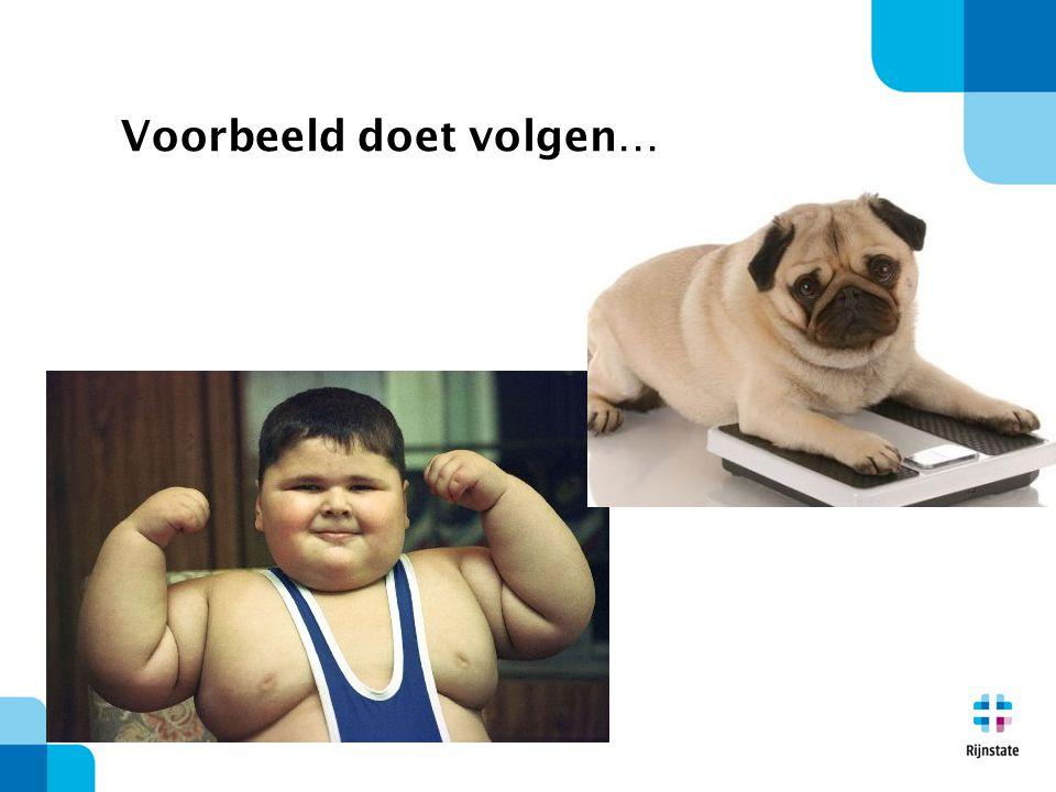 Gevolgen van obesitas  2-8% van de zorgkosten  10-13% overleden aan de gevolgen van obesitas