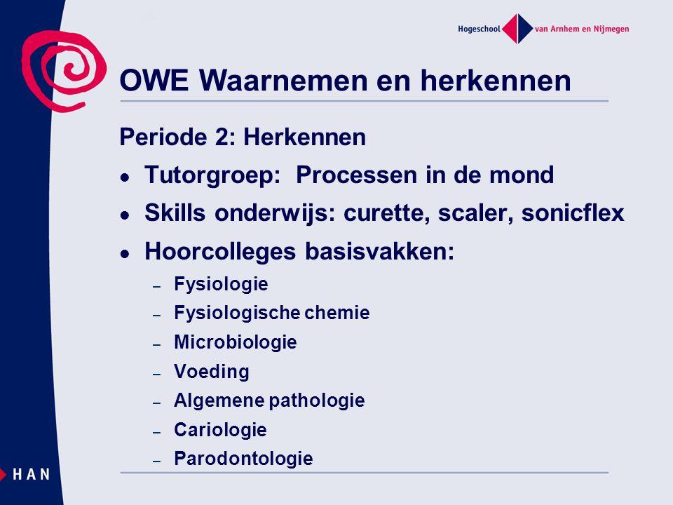 OWE Waarnemen en herkennen Periode 2: Herkennen Tutorgroep: Processen in de mond Skills onderwijs: curette, scaler, sonicflex Hoorcolleges basisvakken