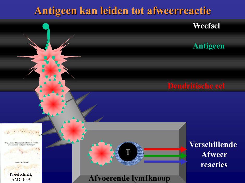 Afvoerende lymfknoop Weefsel Antigeen Dendritische cel Antigeen kan leiden tot afweerreactie Proefschrift, AMC 2003 T Verschillende Afweer reacties