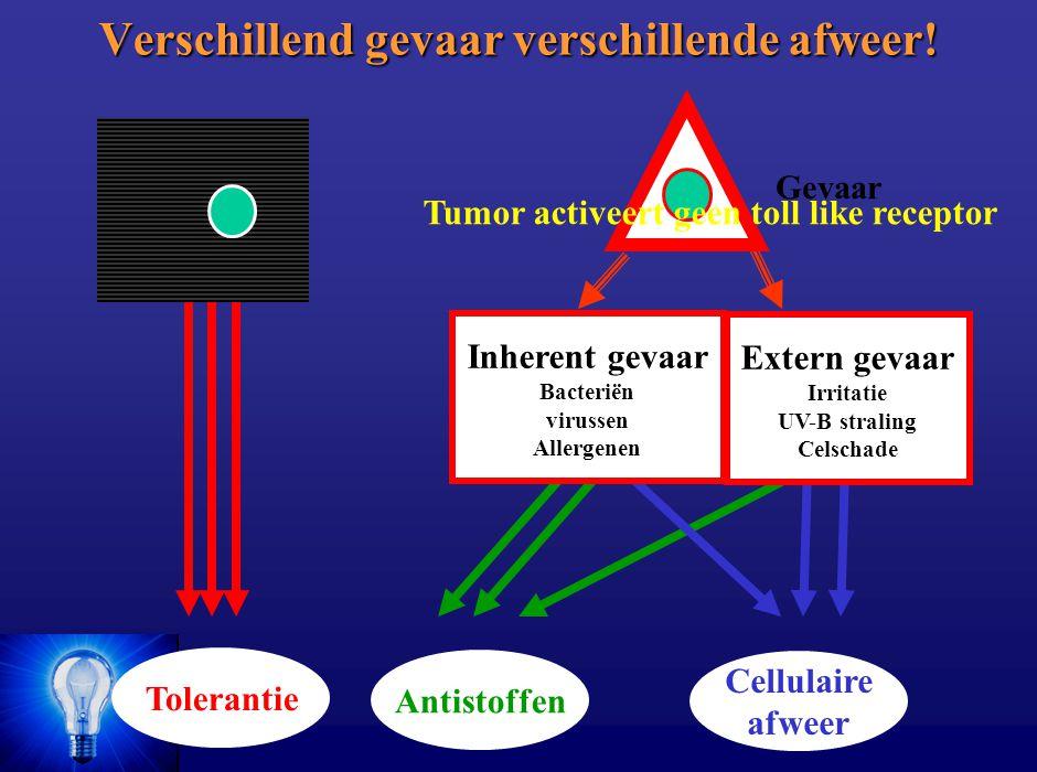 Extern gevaar Irritatie UV-B straling Celschade Inherent gevaar Bacteriën virussen Allergenen Gevaar Tolerantie Antistoffen Cellulaire afweer Verschil