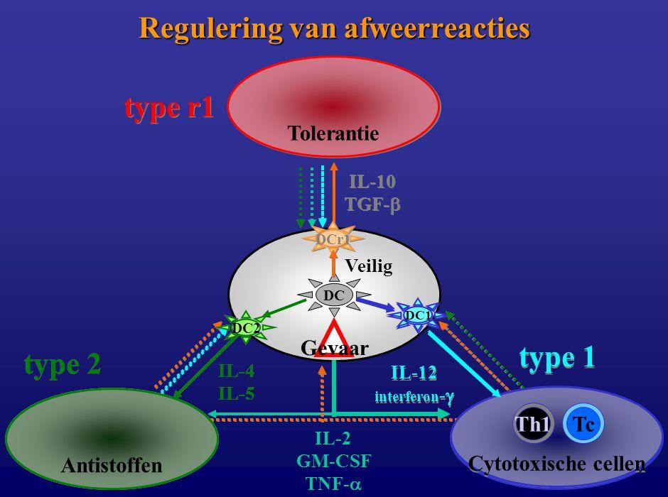B Th2 Tr1Ts IL-2 GM-CSF TNF-  DC Antistoffen type 2 IL-4 IL-5 DC2 Tolerantie type r1 IL-10 TGF-  DCr1 Cytotoxische cellen TcTh1 type 1 IL-12 interfe