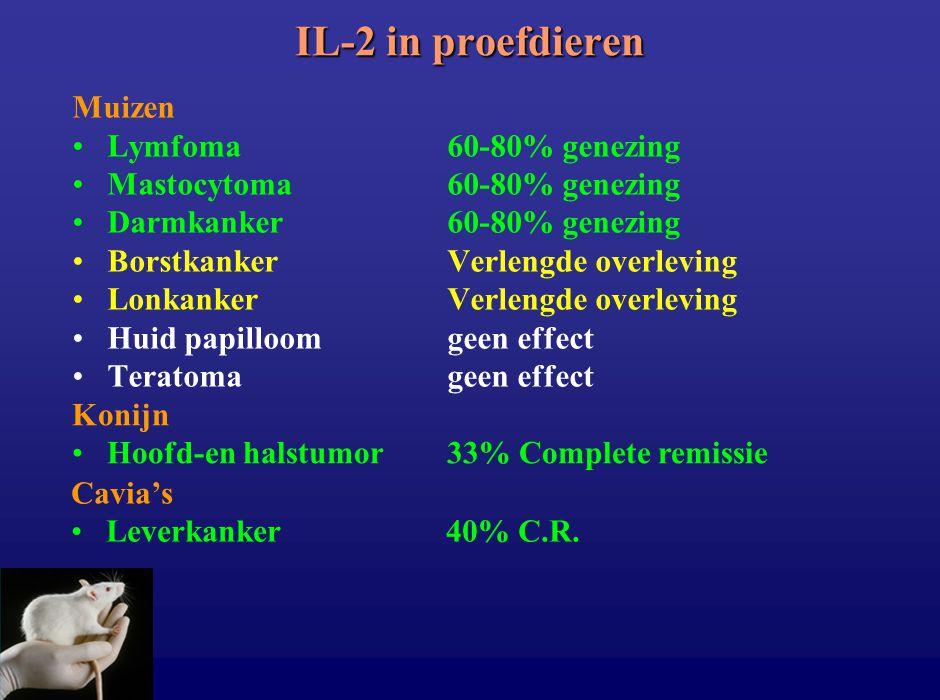Muizen Lymfoma60-80% genezing Mastocytoma60-80% genezing Darmkanker60-80% genezing BorstkankerVerlengde overleving LonkankerVerlengde overleving Huid
