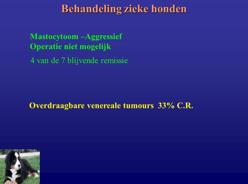 Behandeling zieke honden Mastocytoom –Aggressief Operatie niet mogelijk 4 van de 7 blijvende remissie Overdraagbare venereale tumours 33% C.R.