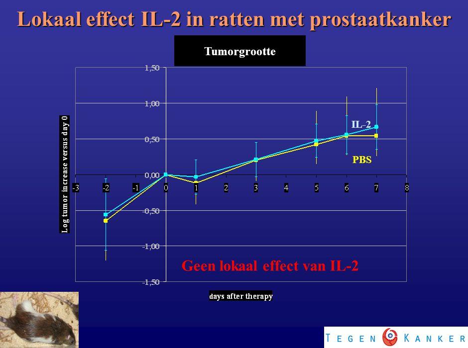 PBS IL-2 Geen lokaal effect van IL-2 Lokaal effect IL-2 in ratten met prostaatkanker Tumorgrootte