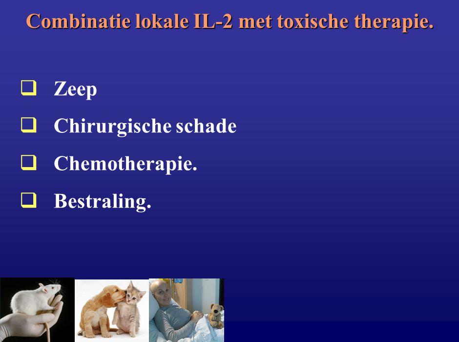 Combinatie lokale IL-2 met toxische therapie.  Zeep  Chirurgische schade  Chemotherapie.  Bestraling.