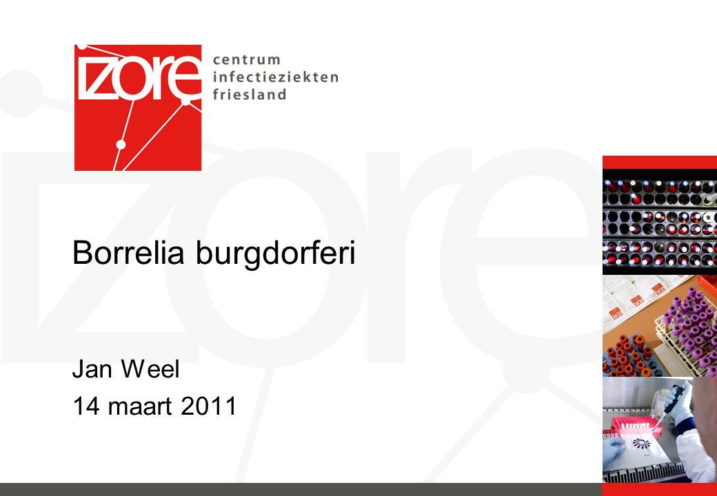 MDO Borrelia Start 01-01-2010 Neuroloog Reumatoloog Dermatoloog Internist-infectioloog Microbioloog