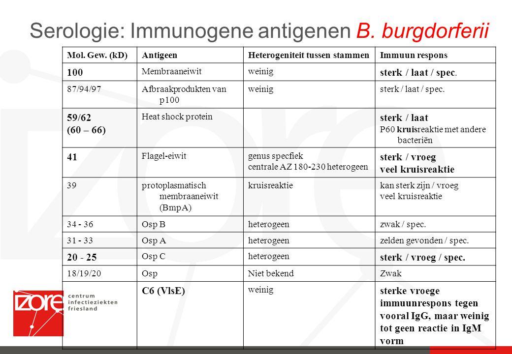 Serologie: Immunogene antigenen B. burgdorferii Mol. Gew. (kD)AntigeenHeterogeniteit tussen stammenImmuun respons 100 Membraaneiwitweinig sterk / laat