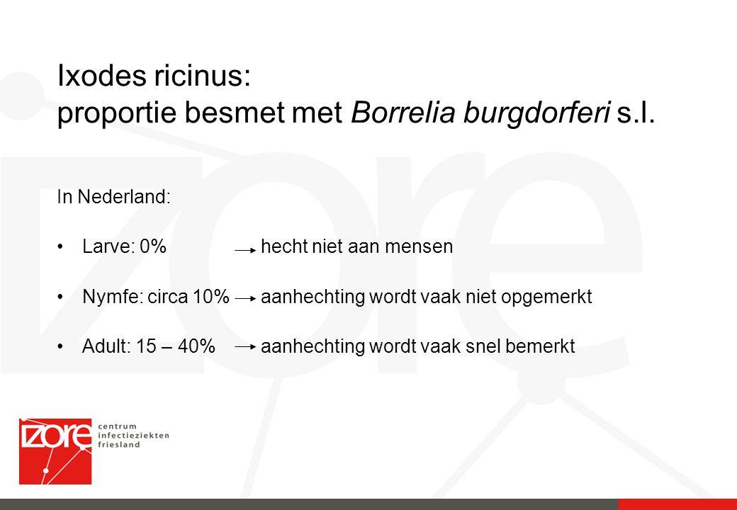 Ixodes ricinus: proportie besmet met Borrelia burgdorferi s.l. In Nederland: Larve: 0% hecht niet aan mensen Nymfe: circa 10% aanhechting wordt vaak n