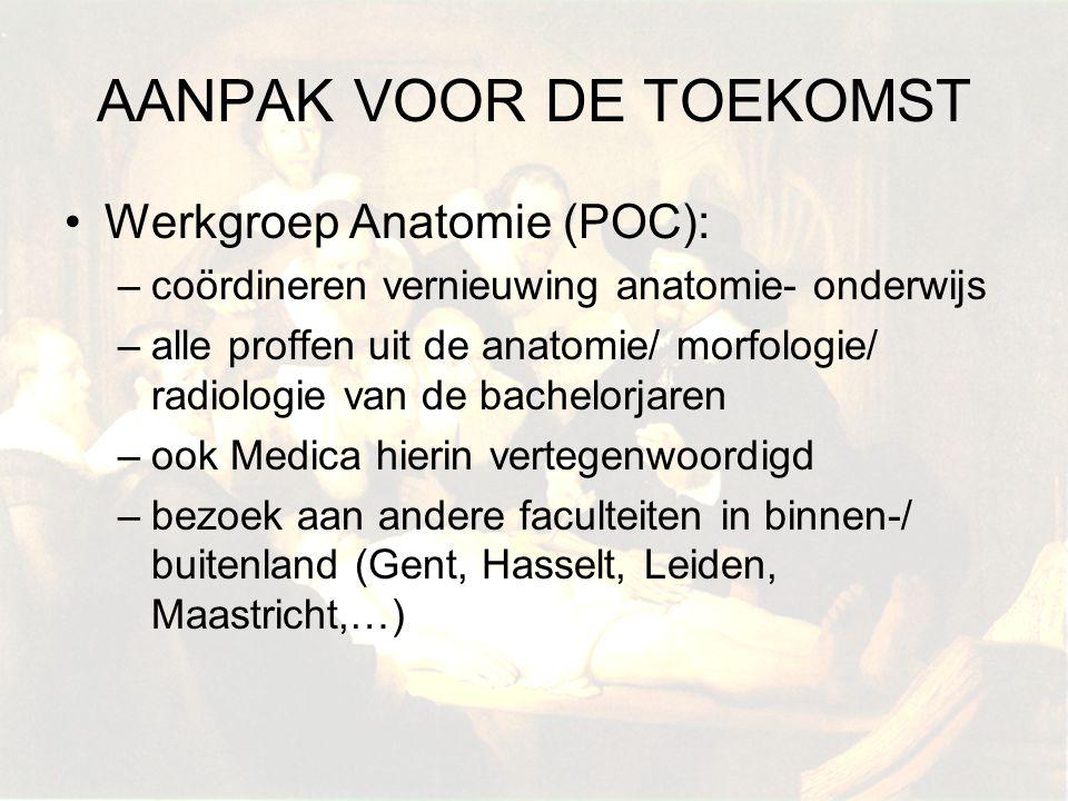 Werkgroep Anatomie (POC): –coördineren vernieuwing anatomie- onderwijs –alle proffen uit de anatomie/ morfologie/ radiologie van de bachelorjaren –ook