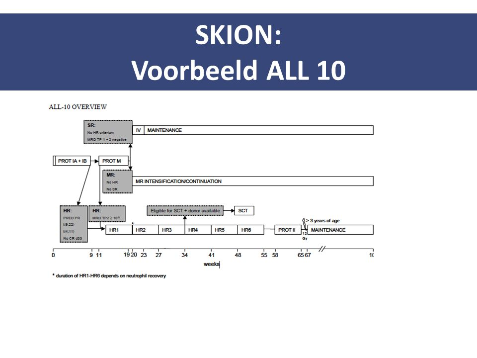SKION: Voorbeeld ALL 10