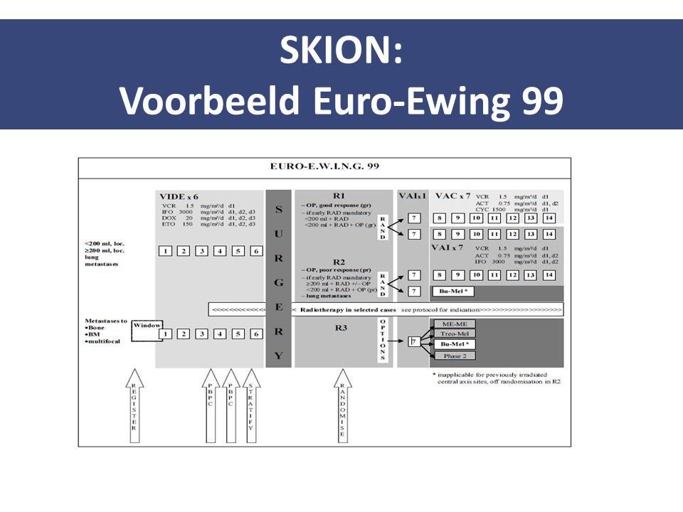 SKION: Voorbeeld Euro-Ewing 99