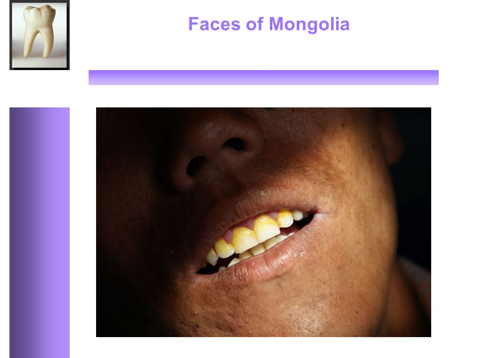 Faces of Mongolia