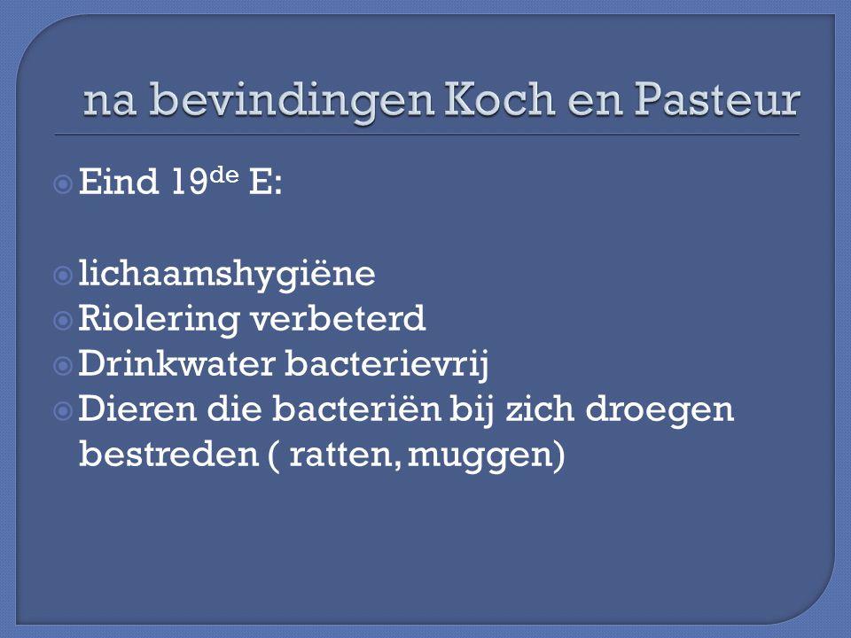  Eind 19 de E:  lichaamshygiëne  Riolering verbeterd  Drinkwater bacterievrij  Dieren die bacteriën bij zich droegen bestreden ( ratten, muggen)
