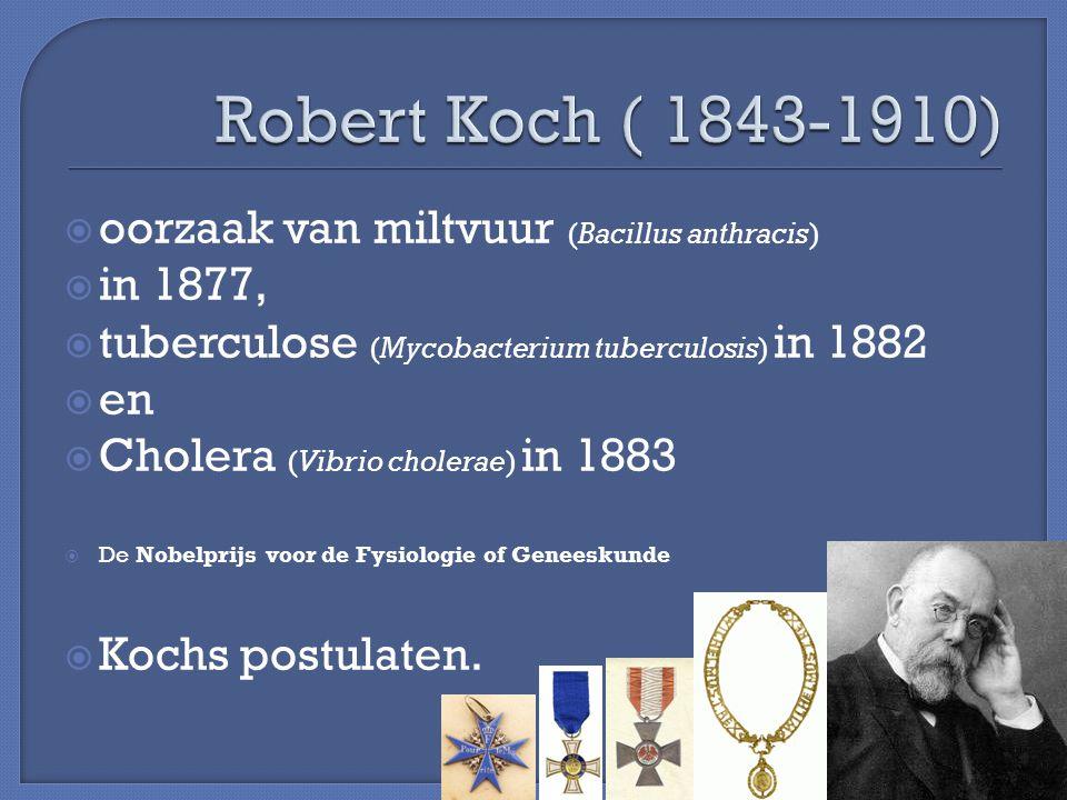  oorzaak van miltvuur (Bacillus anthracis)  in 1877,  tuberculose (Mycobacterium tuberculosis) in 1882  en  Cholera (Vibrio cholerae) in 1883  D