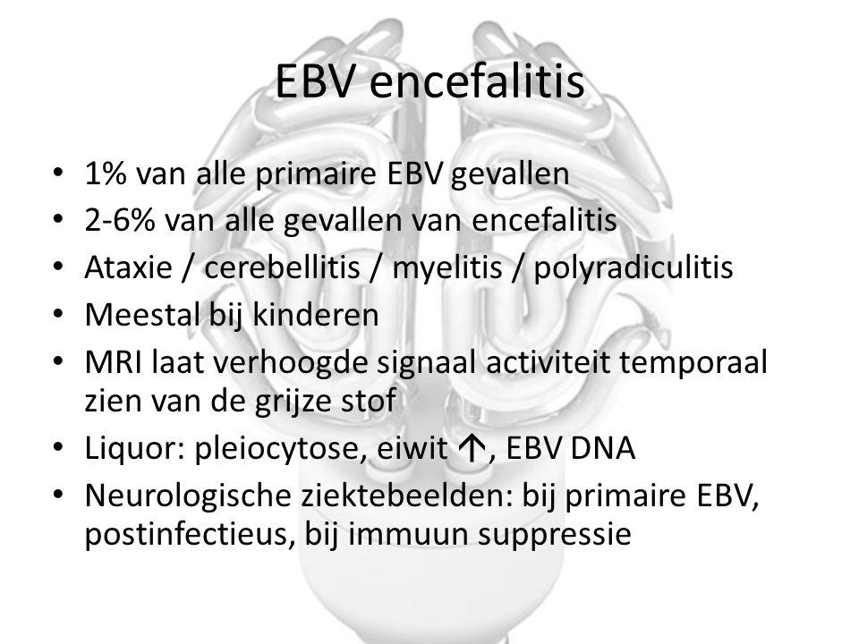 EBV encefalitis 1% van alle primaire EBV gevallen 2-6% van alle gevallen van encefalitis Ataxie / cerebellitis / myelitis / polyradiculitis Meestal bi