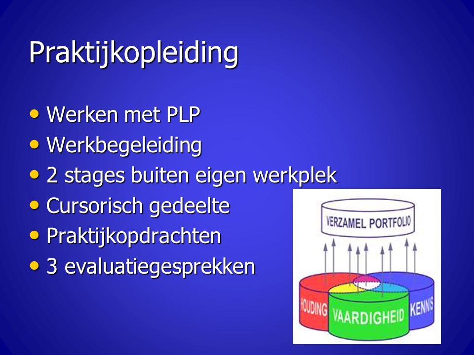Praktijkopleiding Werken met PLP Werken met PLP Werkbegeleiding Werkbegeleiding 2 stages buiten eigen werkplek 2 stages buiten eigen werkplek Cursoris