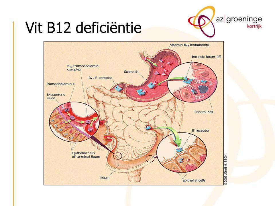 Adequate opname van vit B12 berust op 3 factoren - aanwezigheid in voeding - pepsine: bevrijdt het B12 van de bindingseiwitten - pancreatische proteasen - intrinsic factor: opname complex B12 en IF thv terminale ileum