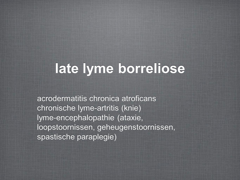 late lyme borreliose acrodermatitis chronica atroficans chronische lyme-artritis (knie) lyme-encephalopathie (ataxie, loopstoornissen, geheugenstoornissen, spastische paraplegie) acrodermatitis chronica atroficans chronische lyme-artritis (knie) lyme-encephalopathie (ataxie, loopstoornissen, geheugenstoornissen, spastische paraplegie)