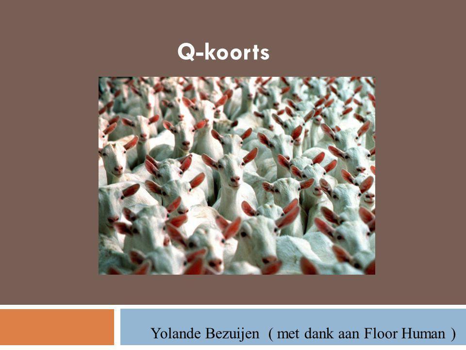 Q-koorts Yolande Bezuijen ( met dank aan Floor Human )