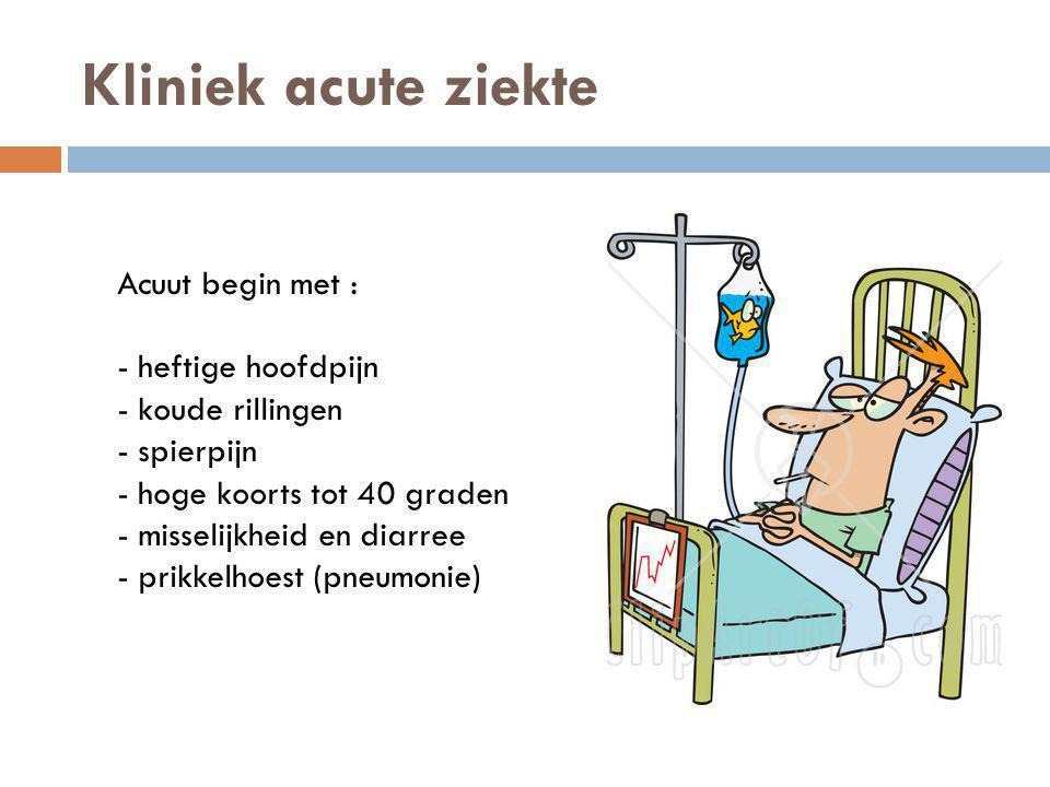 Kliniek acute ziekte Acuut begin met : - heftige hoofdpijn - koude rillingen - spierpijn - hoge koorts tot 40 graden - misselijkheid en diarree - prik