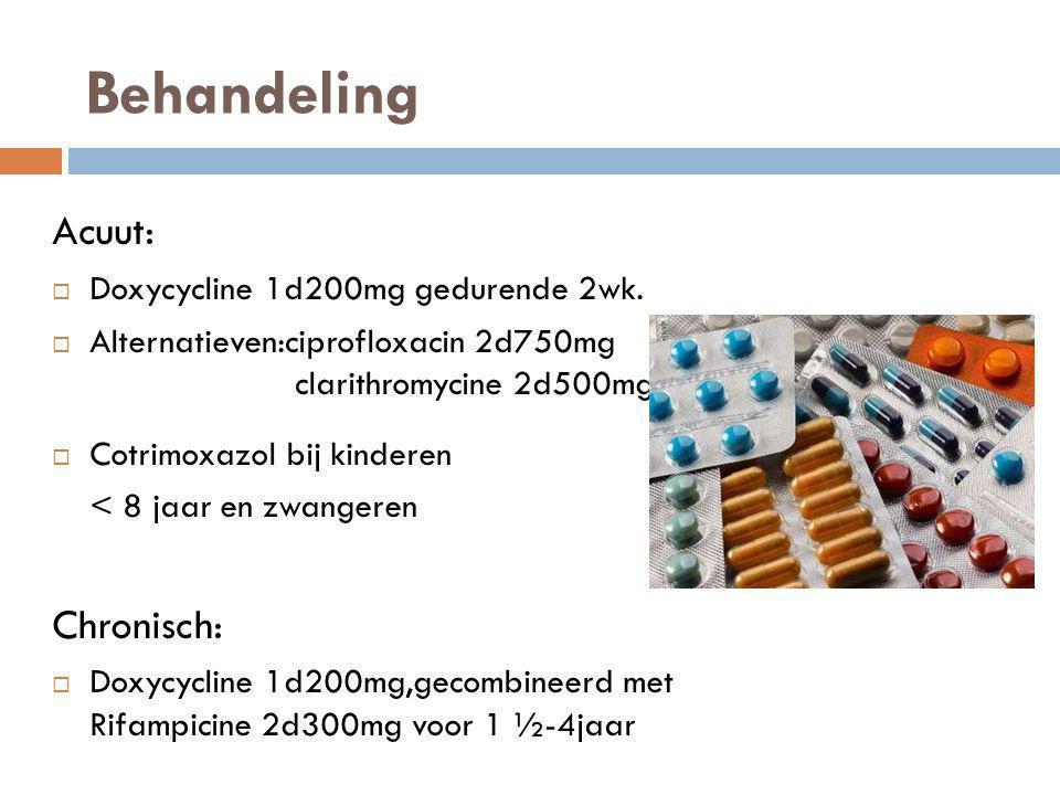 Behandeling Acuut:  Doxycycline 1d200mg gedurende 2wk.  Alternatieven:ciprofloxacin 2d750mg clarithromycine 2d500mg  Cotrimoxazol bij kinderen < 8