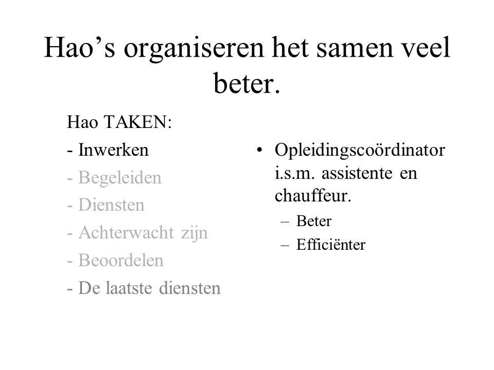 Hao's organiseren het samen veel beter.