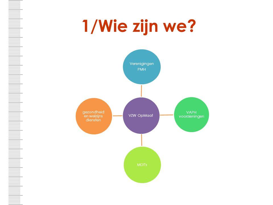 1/Wie zijn we? VZW OpMaat Verenigingen PMH VAPH voorzieningen MDT's gezondheid en welzijns diensten