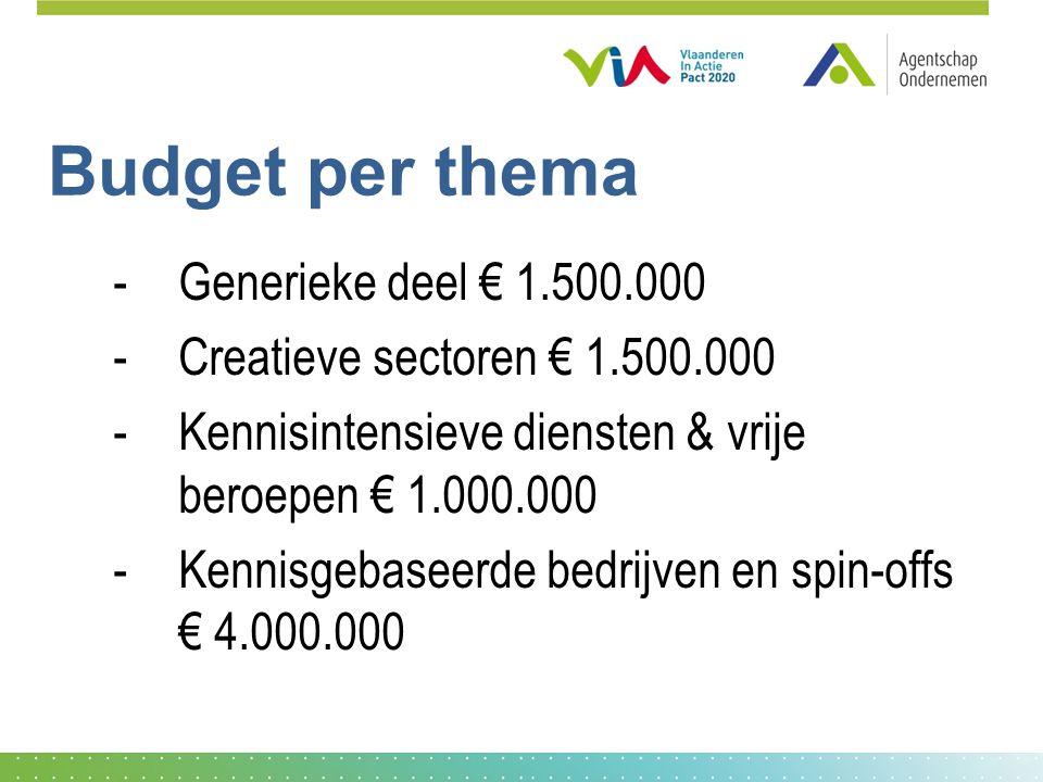 Budget per thema -Generieke deel € 1.500.000 -Creatieve sectoren € 1.500.000 -Kennisintensieve diensten & vrije beroepen € 1.000.000 -Kennisgebaseerde bedrijven en spin-offs € 4.000.000