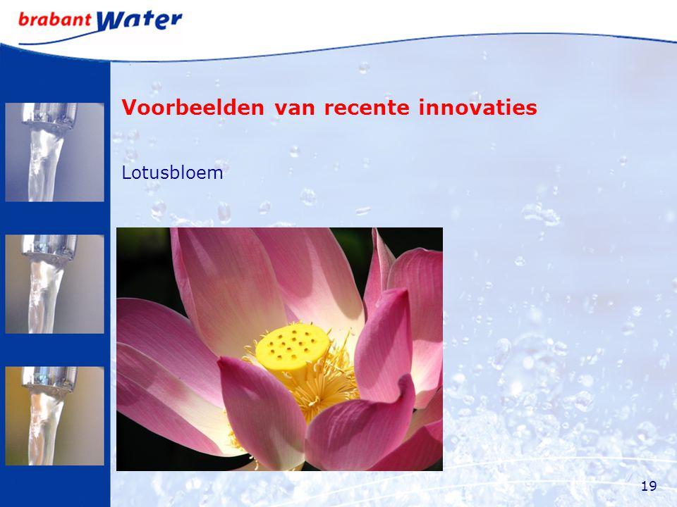 Voorbeelden van recente innovaties Lotusbloem 19
