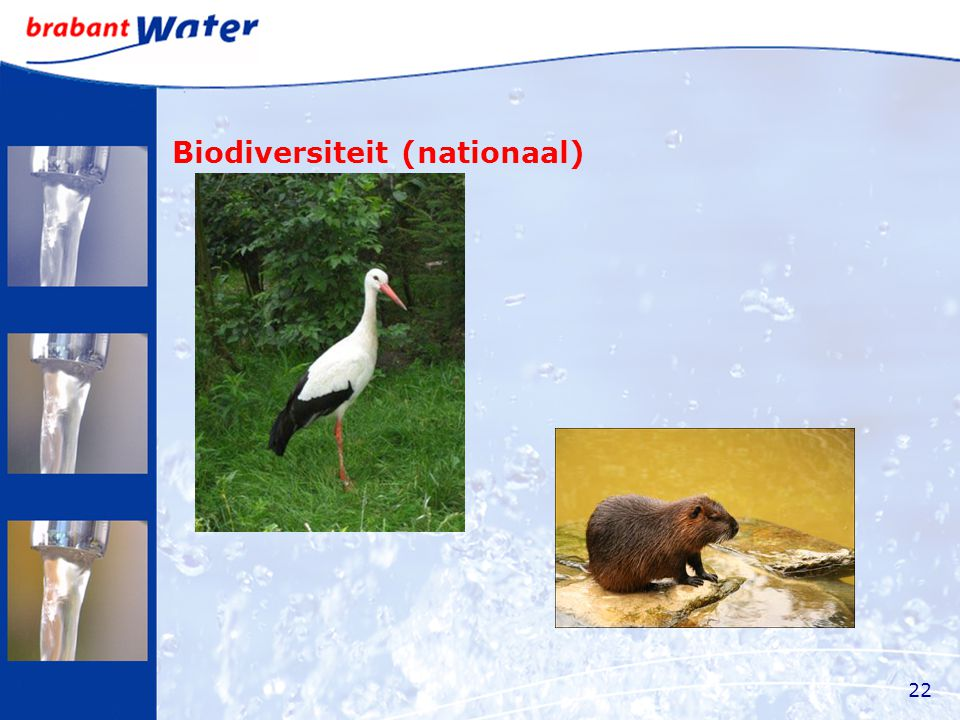 Biodiversiteit (nationaal) 22