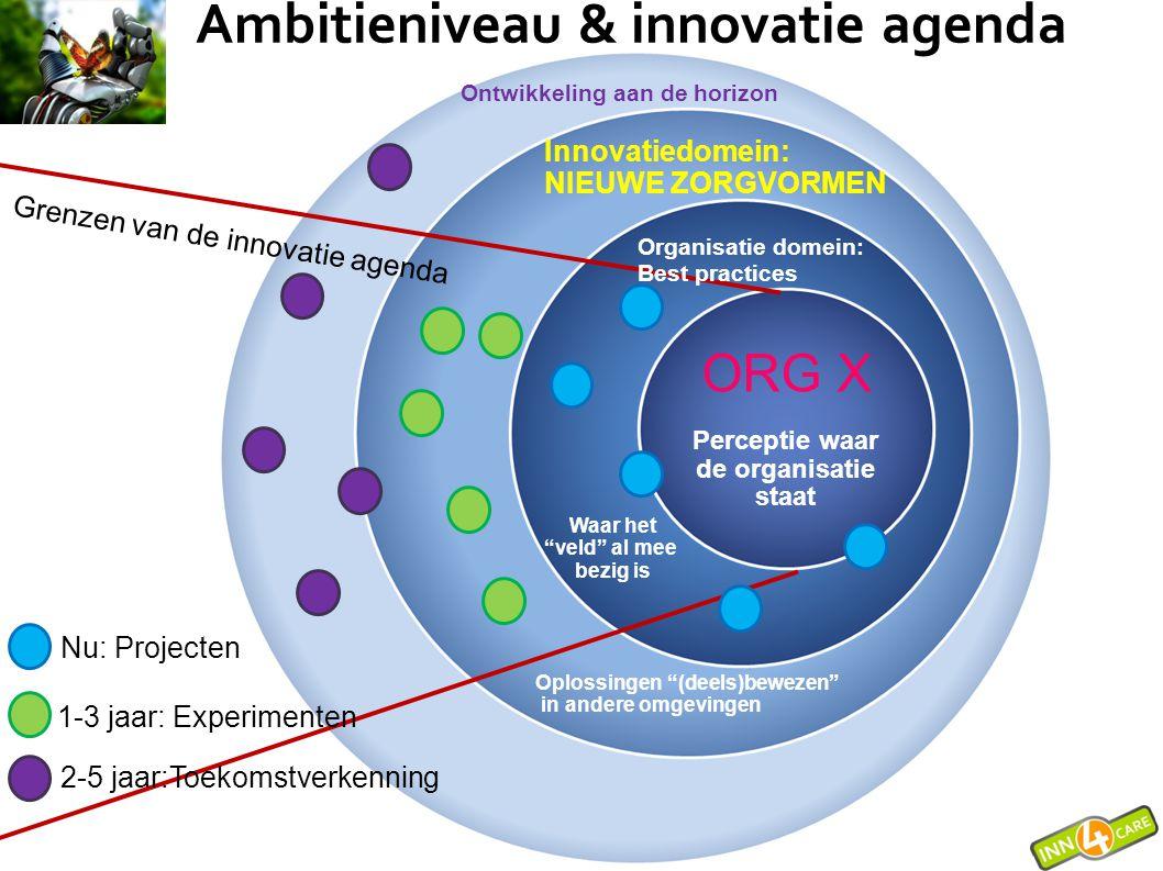 """ORG X Perceptie waar de organisatie staat Nu: Projecten 1-3 jaar: Experimenten 2-5 jaar:Toekomstverkenning Grenzen van de innovatie agenda Waar het """"v"""