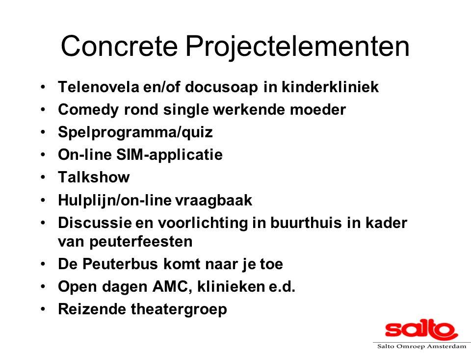 Concrete Projectelementen Telenovela en/of docusoap in kinderkliniek Comedy rond single werkende moeder Spelprogramma/quiz On-line SIM-applicatie Talk