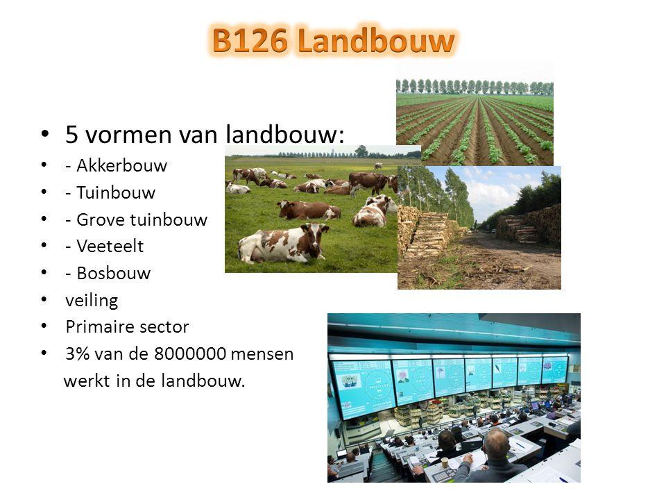 5 vormen van landbouw: - Akkerbouw - Tuinbouw - Grove tuinbouw - Veeteelt - Bosbouw veiling Primaire sector 3% van de 8000000 mensen werkt in de landb