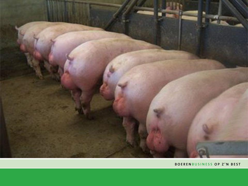M ISSIE Boerenbond Deurne is een innoverende en winstgedreven coöperatie in Zuid-Nederland.