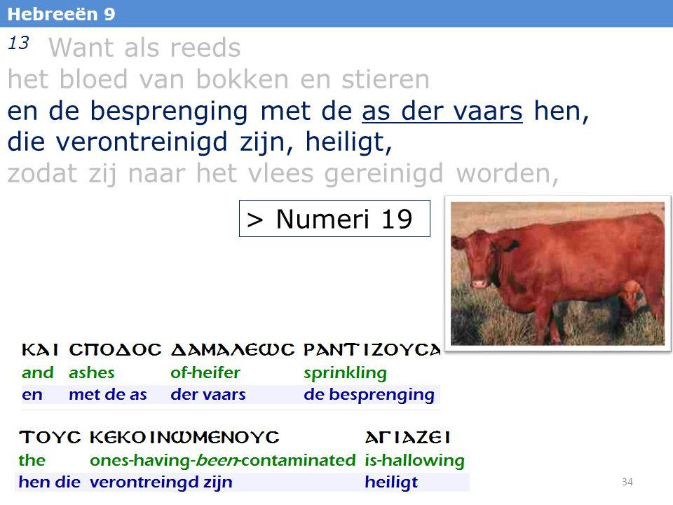 34 Hebreeën 9 13 Want als reeds het bloed van bokken en stieren en de besprenging met de as der vaars hen, die verontreinigd zijn, heiligt, zodat zij naar het vlees gereinigd worden, > Numeri 19