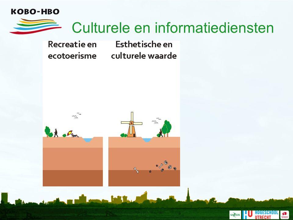 Culturele en informatiediensten