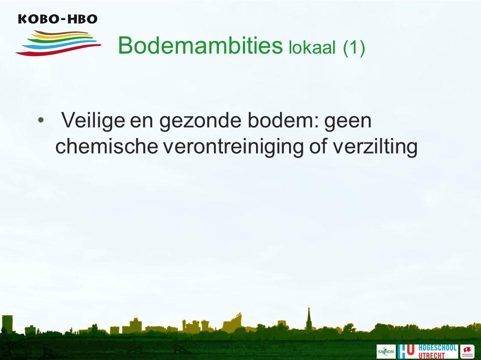 Bodemambities lokaal (1) Veilige en gezonde bodem: geen chemische verontreiniging of verzilting