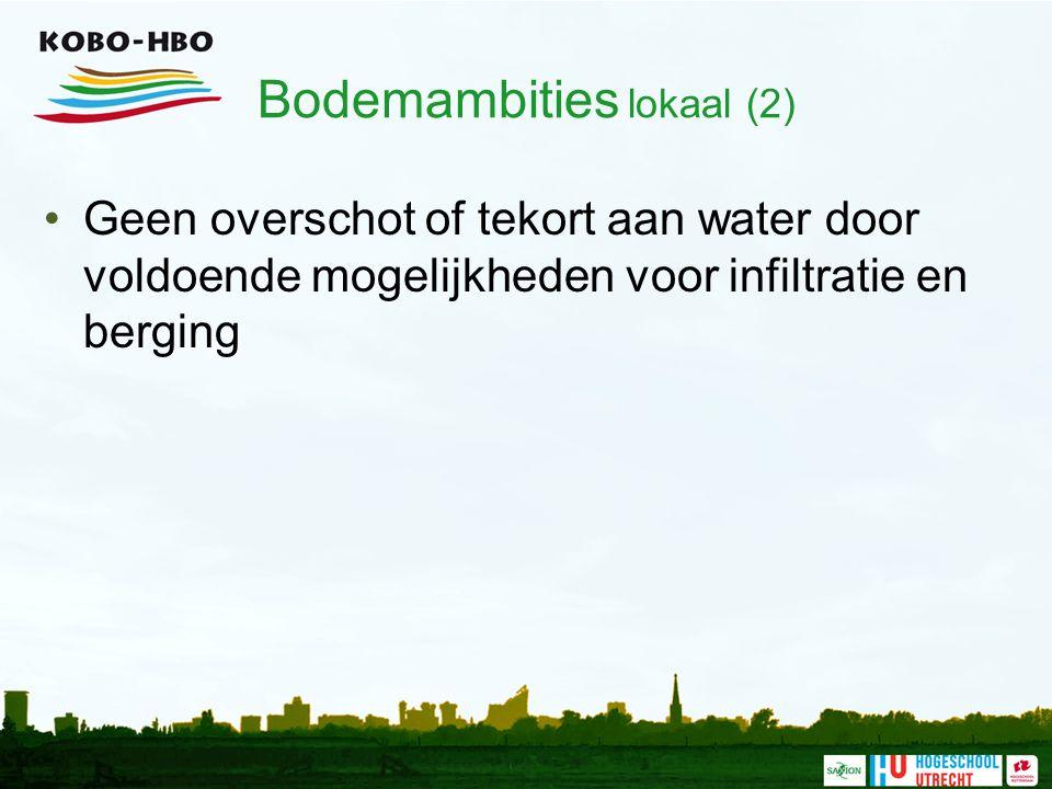 Bodemambities lokaal (2) Geen overschot of tekort aan water door voldoende mogelijkheden voor infiltratie en berging