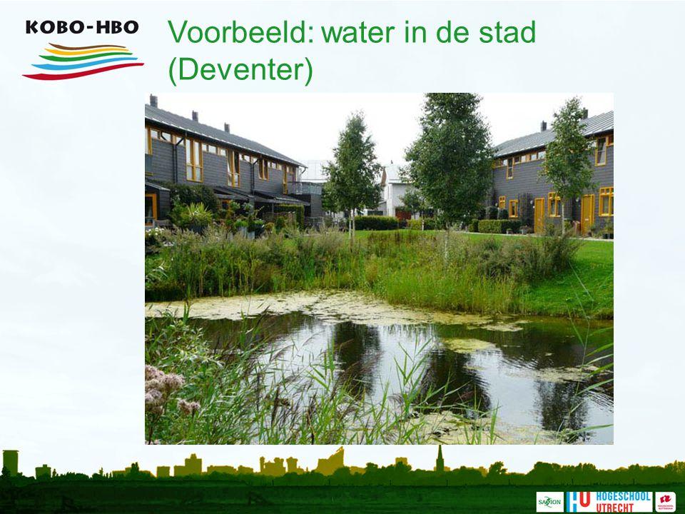 Voorbeeld: water in de stad (Deventer)