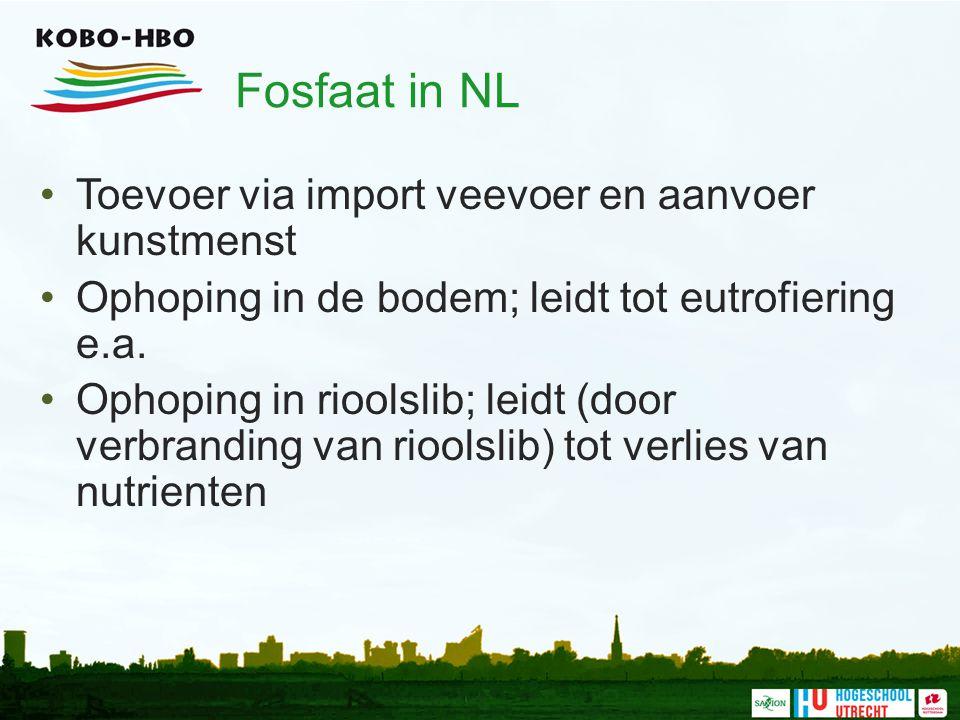 Fosfaat in NL Toevoer via import veevoer en aanvoer kunstmenst Ophoping in de bodem; leidt tot eutrofiering e.a.