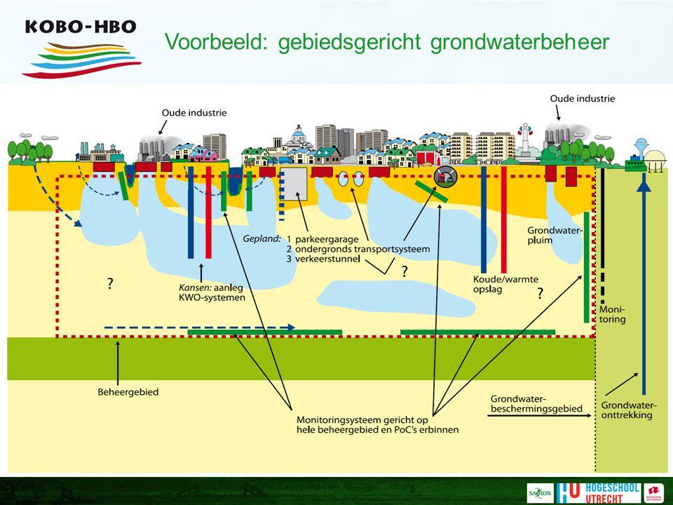 Voorbeeld: gebiedsgericht grondwaterbeheer