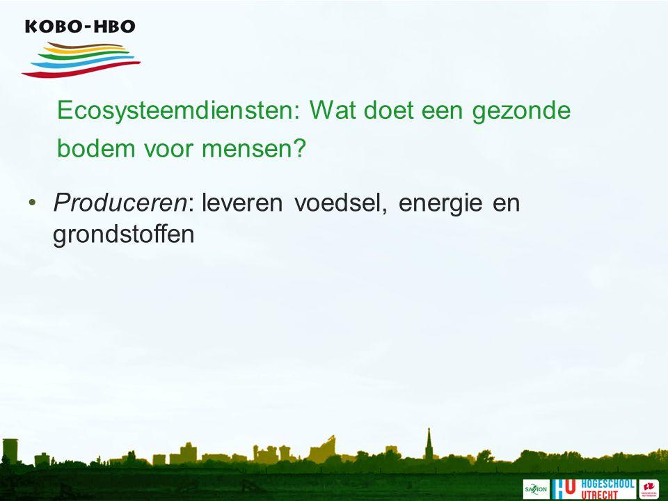 Ecosysteemdiensten: Wat doet een gezonde bodem voor mensen.