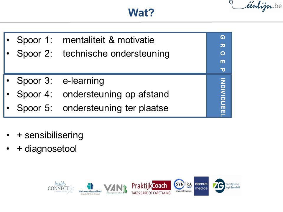 Spoor 1:mentaliteit & motivatie Spoor 2: technische ondersteuning Spoor 3: e-learning Spoor 4:ondersteuning op afstand Spoor 5:ondersteuning ter plaatse + sensibilisering + diagnosetool Wat.