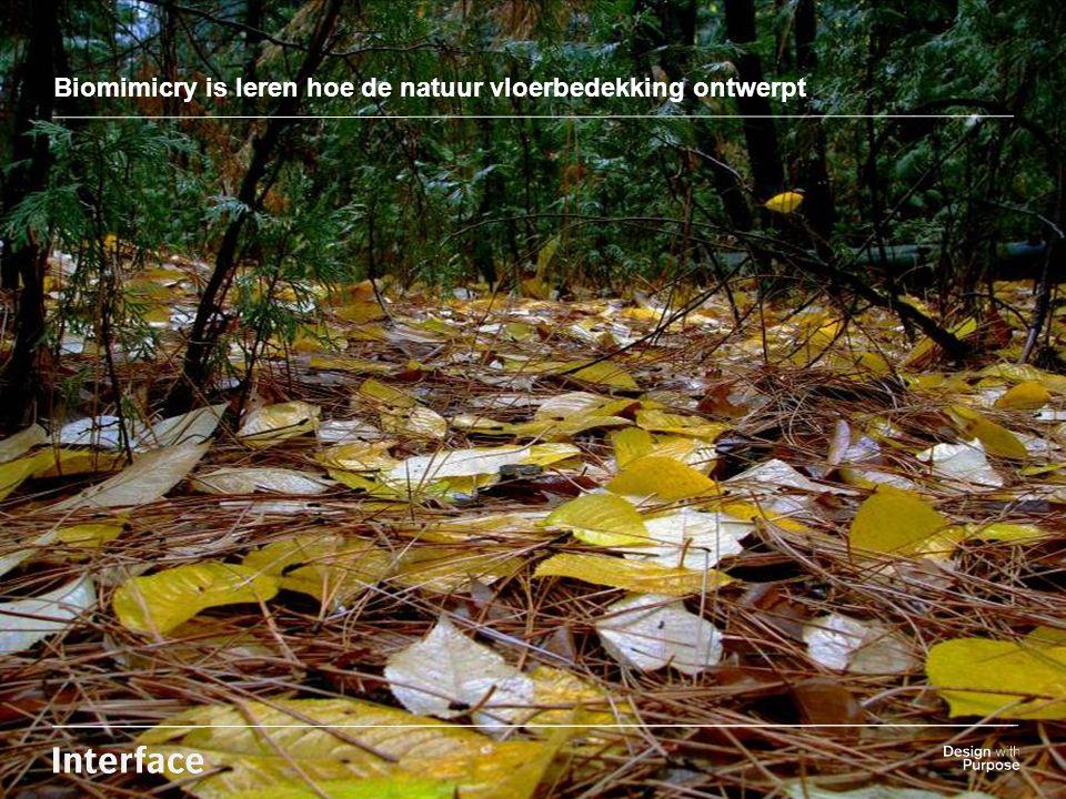 Insert background Image here Biomimicry is leren hoe de natuur vloerbedekking ontwerpt