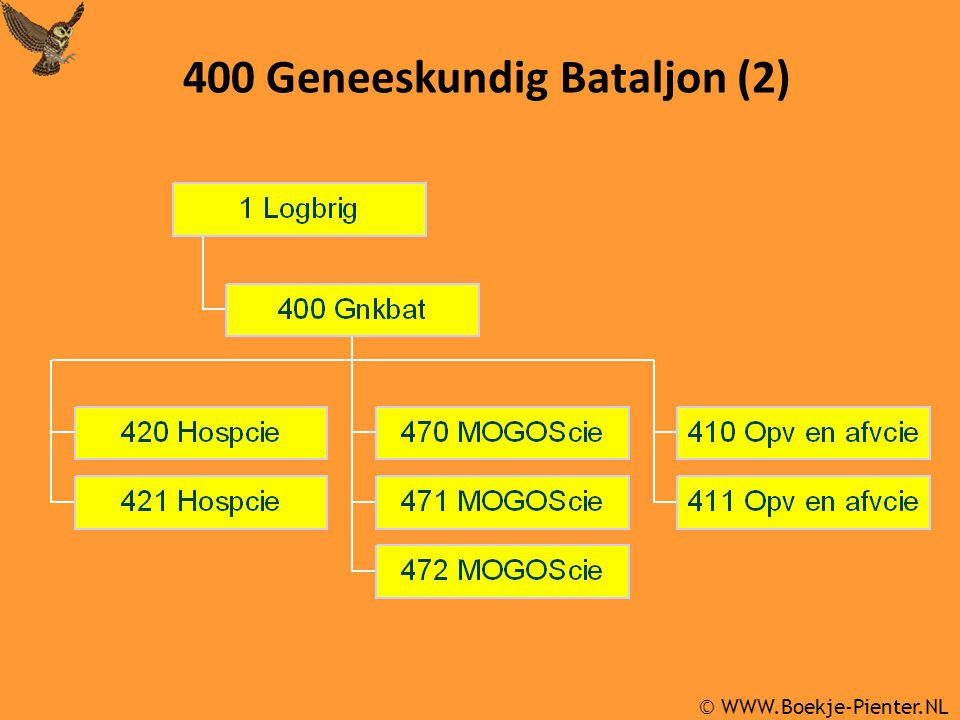 Gnkopvafvcie  interne (400 Gnkbat) en externe taakstelling  2 x opvang- en afvoerpeloton tezamen:  2 x geneeskundige afvoergroep (à 9 ziekenauto's)  2 x hulppostgroep (role 1)  2 x gewondenvervoergroep (à 10 ziekenauto's)  1 x opvanggroep