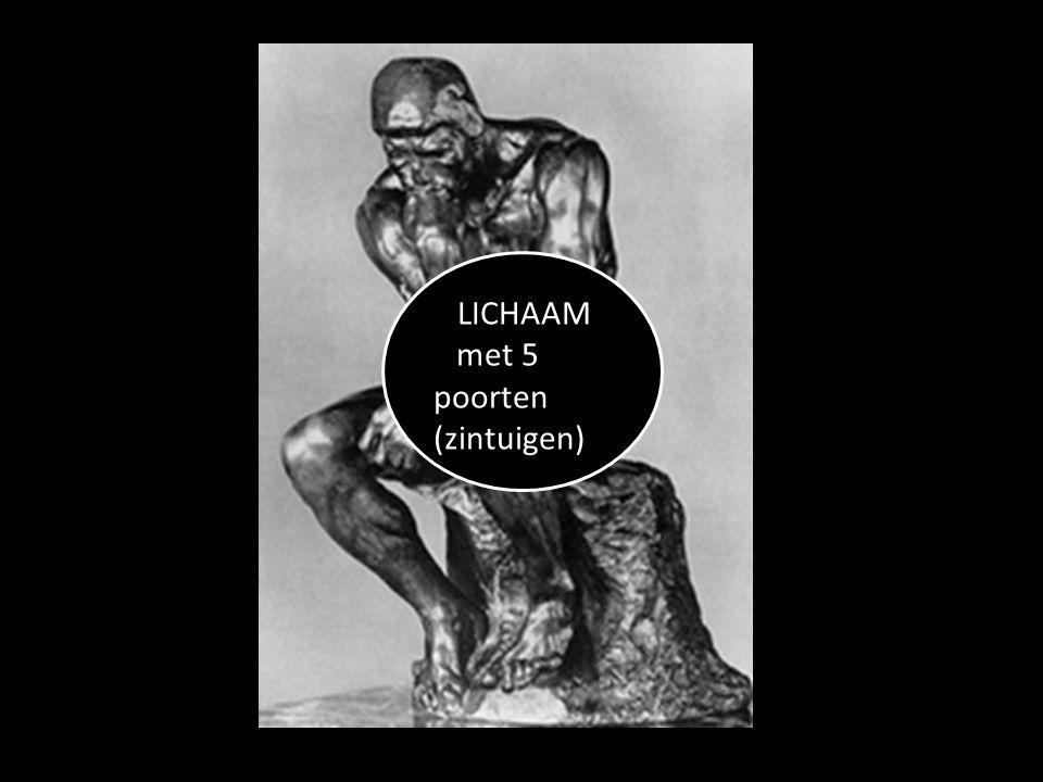 LICHAAM met 5 poorten (zintuigen)