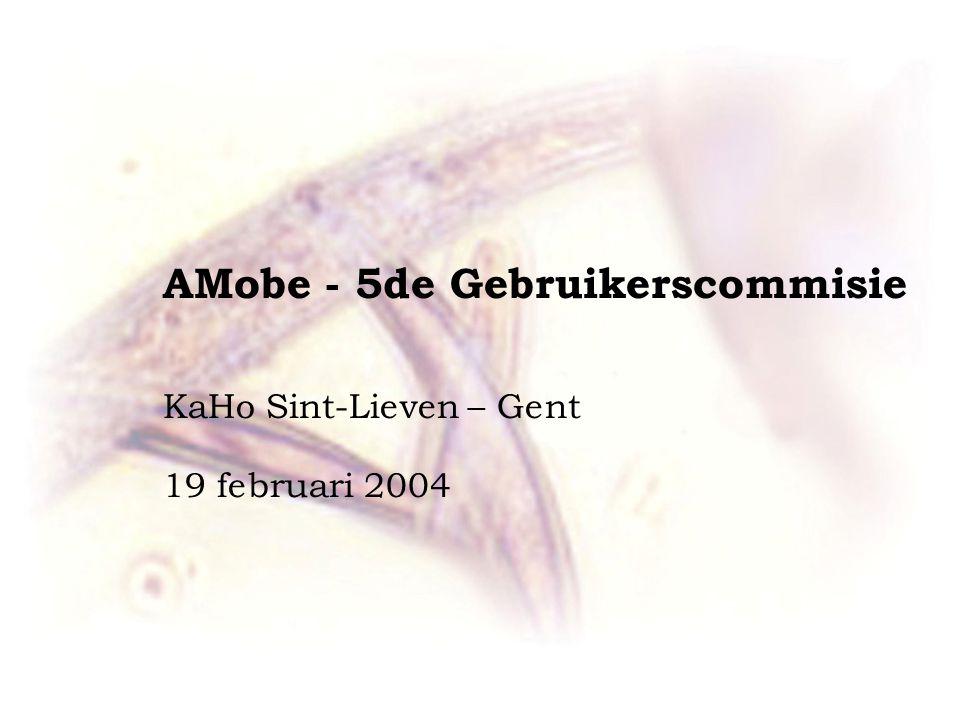 AMobe - 5de Gebruikerscommisie KaHo Sint-Lieven – Gent 19 februari 2004