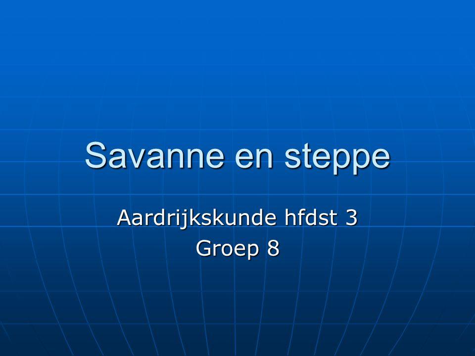 Savanne en steppe Aardrijkskunde hfdst 3 Groep 8