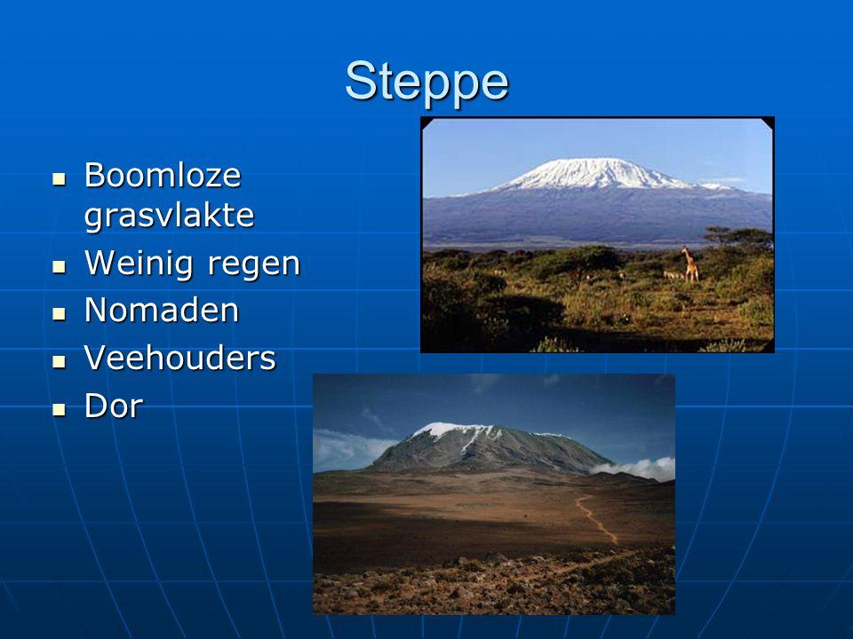 Steppe Boomloze grasvlakte Boomloze grasvlakte Weinig regen Weinig regen Nomaden Nomaden Veehouders Veehouders Dor Dor