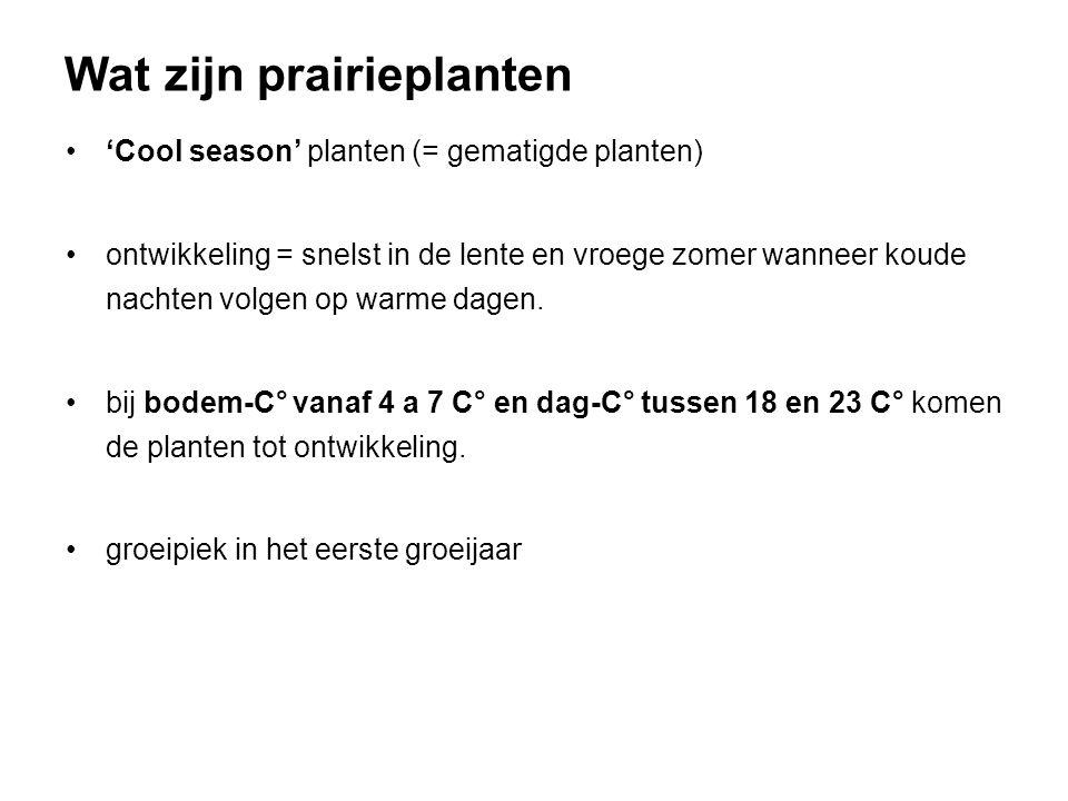 'Cool season' planten (= gematigde planten) ontwikkeling = snelst in de lente en vroege zomer wanneer koude nachten volgen op warme dagen. bij bodem-C